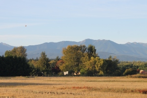 The view from our front porch...see the hot air balloon?